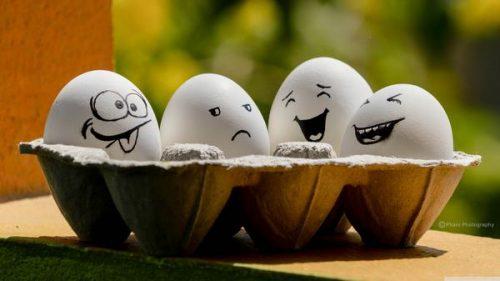 mo-thay-trung-1 Mơ thấy trứng đánh số gì? Ý nghĩa điềm báo như thế nào?